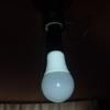 熟考の末 築40年?の別荘にLED電球をつけた理由は「寿命」