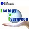 e&e 秦野自動車解体 廃自動車の再活用・解体再生を通して、お客様と地域社会そして地球環境に尽くせる企業を目指します。