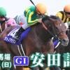 【安田記念2018】本命馬、対抗馬の2頭から勝負!