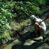 大神山神社の参道・・・・・西楽院跡前の、延命水が断水