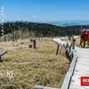 【関西】大台ヶ原、大杉谷からゆく近畿大展望の世界、滝と展望の幸せ登山旅