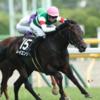 2019年の夏競馬も最終週。夏の終わりは9月1日の新潟記念で盛り上がりましょう!!