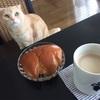 神戸屋のクリームパンとクリームパン。