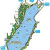浜ちゃん日記  新春の佐鳴湖の一周散策