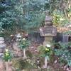 東向寺(今川義元の首塚があると云われる西尾市のお寺)に行ってきました