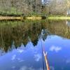 富沢の池46(池も冬支度始まりました)