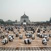 パンダが台北の街をふらつきます