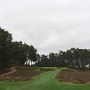 イギリスゴルフ #88|Sunningdale Golf Club - Old Course|野性味あふれる兄,オールドコース