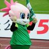 2017.10.1 FC岐阜vs名古屋グランパス