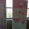桜情報(改札・中央公民館) @池田市