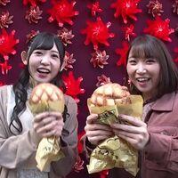 #08.5 神田川杯直前スペシャル!神田川ジェットガールズ浅草トレーニング!