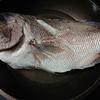 鯛の煮つけで注意すること