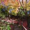 霧島「旅行人山荘」紅葉のもみじの湯