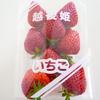 【越後姫】やわらか果肉がおいしい新潟の苺
