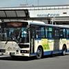 中国バス 315