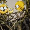 キジムナー ―奇妙な同居人― ( 北陸オカルト会:妖怪解説 )