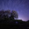 【天体撮影記 第87夜】 佐賀県 嬉野市 納戸料の百年桜と悠久の星空