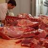 肉食には本質的に不潔なところがある?アメリカの哲人・ソローに学ぶ
