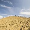 【一日一枚写真】鳥取砂丘 Part.20【一眼レフ】