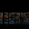 蓮華寺(れんげじ)のお寺内から見る紅葉