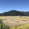 里山ハイク:葛尾山(坂城町)