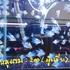 チャトチャック市場 〜 魚・水槽エリア
