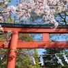 春の鎌倉① 桜満開の寺社仏閣