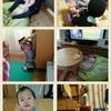 【三姉妹】1歳5ヶ月/定期健診日、モモ様に振り回される侍女の話。