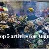断捨離を通してスペースの大切さに気づきました!8月の人気記事ベスト5