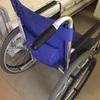 歩行障害/闘病記 〜歩けないことはないのですが〜