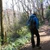 股関節痛とともに 高尾山から小仏峠へ (2018.3.12)