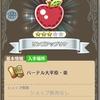 【FLO】リンゴアップリケの入手場所(=゚ω゚)ノ