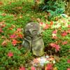 京都洛北エリアの紅葉おすすめスポット【一乗寺】風情ただよう散歩道