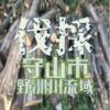 野洲川流域で無料で伐採してくれる方を募集しています 滋賀県守山市