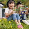 図鑑見ながらお花探し!自然豊かでたくさんの種類のお花発見!
