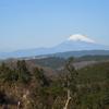 大丸山~巣雲山7