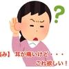 【悩み】 耳が痛いけど・・・これ欲しい!!
