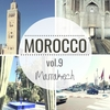 モロッコ旅行記⑨マラケシュ編Part2~旧市街史跡・マジョレル庭園・カルフール~