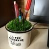 フェイクグリーンでペン立てをDIY ~我が家緑化計画~