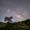 【天体撮影記 第20夜】 福島県 三春町に一本桜と天の川撮影しに訪れました。