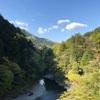 【登山】JR奥多摩駅~鋸尾根~御前山 標高1405m~大ブナ尾根~奥多摩湖バス停