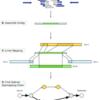 cell free DNAサンプルのSVを検出する SViCT