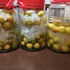毎年恒例の美味しい梅酒、梅ジュース作り