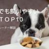 初めてでも飼いやすい犬種トップ10|ドッグトレーナー目線で解説