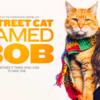 映画「ボブという名の猫 幸せのハイタッチ」救世主は猫?!感動の実話