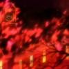 TVアニメ『AMNESIA(アムネシア)』舞台探訪(聖地巡礼)@札幌編