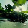 """リコーイメージングスクエア大阪フォトスクール「360°カメラで撮る""""新しい風景写真""""」参加記"""