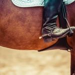 ドライブスルーは馬でも可能である。