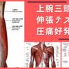 上腕三頭筋の伸張テストと圧痛好発部位