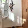 犬用おもちゃをお洗濯★「わたしのおもちゃはどこへ!?」探す犬